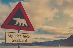 IMG_5653 (gaujourfrancoise) Tags: arctic arctique svalbard norway norvège gaujour northpole pôlenord longyearbyen spitsberg spitzberg