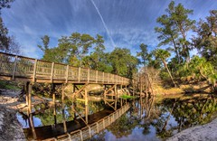 Little Big Econ River - Barr st trailhead (tshabazzphotography) Tags: barr street barrstreet trailhead trail hike hiking nature hdr hdrlovers hdrphotography bridge littlebigeconriver econriver clouds cloud reflection waterreflections palmtree explore adventure canon canonoffical green wild naturelovers landscapes landscapephotographers