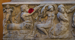 6 gennaio 2017. Roma, via Bocca di Leone, sarcofago di epoca romana adibito a fontana, decorato con tritoni, nereidi e geni alati (adrianaaprati) Tags: roma italy sarcophagus romanart rosarossa redrose 6gennaio 2017 epiphany triton nereid wingedgenius basrelief fountain
