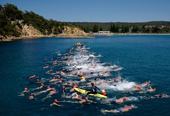 They're off! (jack eastlake) Tags: wharf2waves2017 wharf 2 waves 2017 tathra historic swimming open event events far south coast nsw holidays beach surf lifesaving swimmers swim surfing