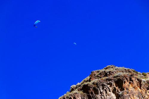 gliders_0622