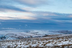January Snow 2017 063 -  Wessenden Head (Mark Schofield @ JB Schofield) Tags: huddersfield pennines pennineway moors moorland peat nationalpark thenationaltrust marsden scammonden pulehill marchhaigh wessenden wessendenvalley meltham wessendenhead reservoir water watershed snow winter landscape bog rock ice outdoors open space panoramic canon 5dmk3 holmemoss mast