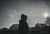 wintersun (berberbeard) Tags: hannover linden fotografie photography urban berberbeard berberbeardwordpresscom germany ilce7m2 itsnotatrick street manuallens deutschland schwarzweiss blackandwhite monochrome 50mm