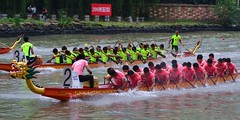 Shanghai - Dragon Boat Races (cnmark) Tags: china shanghai putuo district suzhoucreek dragonboatfestival drachenbootfest 端午节 dragon boat races drachenbootrennen regatta sport action water river 重五节 中国 上海 苏州河 龙舟节 龙船节 龙船 龙舟 比赛 ©allrightsreserved