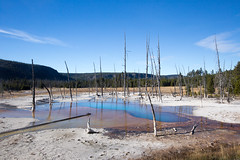 Opalescent Pool, Black Sand Basin (YellowstoneNPS) Tags: hotspring thermalfeaturesinyp uppergeyserbasin yellowstonenationalpark wyoming unitedstates us