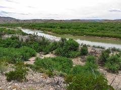 Big Bend National Park (Jasperdo) Tags: bigbendnationalpark bigbend nationalpark nationalparkservice nps texas boquillascanyonoverlook view viewpoint riogranderiver river landscape scenery