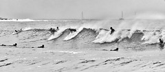 63+363: No space for the faint-hearted (geemuses) Tags: 2017australianopenofsurfing manlybeach nsw manly surfing surf waves skateboard skateboards northernbeaches yachts yachting photography photographers