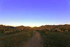 Early morning-1 (AZ Bear Photography) Tags: arizona beautiful arid landscape mountain trail hiking desert cactus green