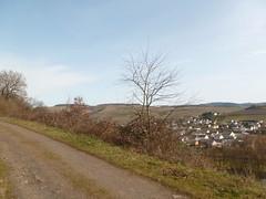 P1030132 (Unterwegs im Trierer Land) Tags: kanzem wiltingen saarbogen