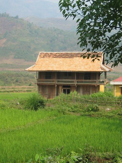Rice man's house