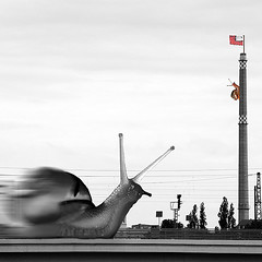 Snail Race (_ Krystian PHOTOSynthesis (wild-thriving) _) Tags: lightpainting berlin art square kunst pipe snail 2006 quad smokestack squareformat paintingwithlight krystian quadrat photosynthesis 50v5f twoism 1in10f50v photophilosophy photosynthese ceciunepipe dyadik snailracer