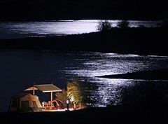 Campsite by Moonlight (Mr Geoff) Tags: camping arizona lake phoenix night interestingness quality tent campsite lakepleasant interestingness2 i500 designingconnections