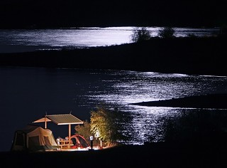 Campsite by Moonlight
