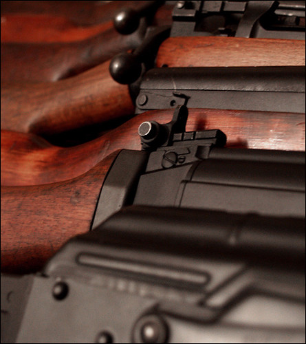Shooting/Firearms? [Archive] - Pearl Drummers Forum