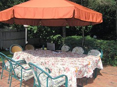 P6190020-Another shot of Dean's favorite summertime hangout
