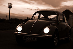 just buggin (Nick  James) Tags: topv111 beetle topv222 85points fourfavs fourfavs2