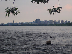 (blix613) Tags: skyline ottawa ducks ottawariver