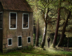 It's been a long day... (Mattijn) Tags: light home forest cat photomontage pino mattijn amersfoort anideg
