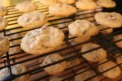 yummmy (alibree) Tags: cookies chocolate fresh chip baked myfaves chocolatechips neildiamond msh0806 ilovecookies msh08068