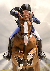 Sunrays: Hunter-Jumper (Isabelle Ann) Tags: show horse art digital photoshop caballo cheval jumping vermont photographer stadium digitalart competition dorset 100views isabelle jumper hunter cavallo cavalo pferd equine equus paard horseshows hunterjumper mostbeautiful manchestervt dorsetvt equineart vermontsummerfestival isabelleann isabelleanngreen equestrianart hunterjumpers dorsetsummerfestival flickrelite equinephotographer hunterjumpershows artistichorse isabellegreen equitationart hunterjumperart dorsethorseshow hunterjumperphotography isabellegreenphotography isabelleannphotography isabelleannhorses mostbeautifulhorses equineartist hunterjumperphotographer hunterjumperphotograhy