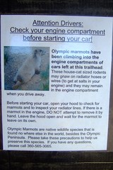 marmots (HeyRocker) Tags: sign marmots olympicpennisula obstructionpoint