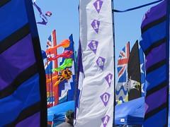 Kites #7 (SilentGoddess) Tags: beach kites longbeach peninsula washingtoncoast kitefestival windsock parafoil stuntkite longbeachkitefestival
