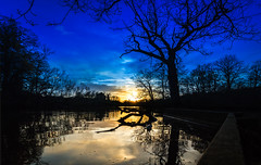 Epping Forest (Malamute01) Tags: epping forest lake sunset london connaught water landscape