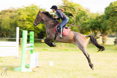 Gives you wings... (JayKirkPhotography) Tags: horses motion blur jumping pony equestrian equine horseriding equinephotography stleonardsridingschool