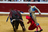 DSC_9133.jpg (josi unanue) Tags: animal blood spain bull arena bullfighter sansebastian esp toro traje asta sangre espada bullring unanue guipuzcoa matador torero tauromaquia sufrimiento cuerno banderilla banderilero