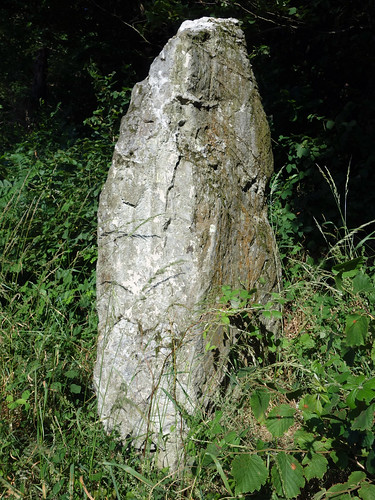 Le menhir dit « La Roche » près d'Uzel - Côtes-d'Armor - Juillet 2015 - 04