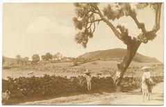 [Men beside stone wall] (SMU Central University Libraries) Tags: horses men churches stonewalls rppc