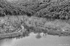DSC_9735-rev-jpeg-bw (Ruben H. Pinilla) Tags: blackandwhite reflection monochrome blw nikon d750 navarra 2470mm