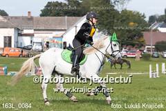 163L_0084 (Lukas Krajicek) Tags: military czechrepublic cz kon koně vysočina vysoina southbohemianregion blažejov dvoreček všestrannost dvoreek