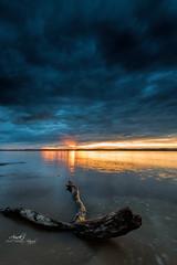Sunset over Jordan Lake (Avisek Choudhury) Tags: sunset landscape northcarolina gitzo jordanlake leefilters nikond800 singhrayreversegnd avisekchoudhury acratechballhead nikon1635mm httpwwwaviseknet avisekchoudhuryphotography jordonlakenc