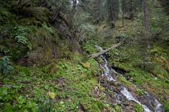 Nationalpark Hohe Tauern in der Umgebung der Rudolfshtte am Weisee-bw_20150926_2672.jpg (Barbara Walzer) Tags: uttendorf nationalparkhohetauern weissee gletscherwelt berghotelrudolfshtte weisseegletscherwelt alpinzentrumrudolfshtte