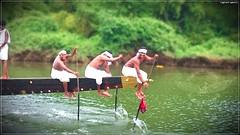 DSC_1536 (|| Nellickal Palliyodam ||) Tags: india race temple boat snake kerala lord pooja krishna aranmula avittam parthasarathy vallamkali palliyodam ezhunnallathu nellickal kavadiyattom jalothsavam