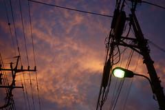 DSC09873c (haru__q) Tags: leica sky cloud twilight streetlight sony     elmar a7