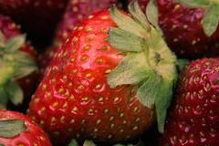 20150525_0001 (aurelle.genzlinger) Tags: macro unitedstates pennsylvania strawberries brynathyn