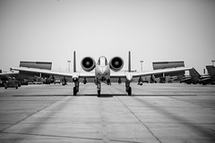 Black Flag-103 (ben.jonkman) Tags: al force military air kuwait deployment warthog a10 jaber