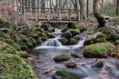 Puente II (Perurena) Tags: wood trees naturaleza nature water rio forest river puente madera agua arboles ponte bosque pontevedra brigde vegetación moaña efectoseda riodasfragas
