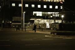 Late Autumn (hidesax) Tags: japan tokyo shinjuku sigma quattro dp3 lateautumn hidesax