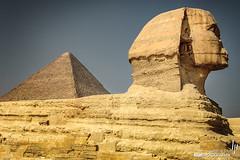 Great Sphinx of Giza with Pyramid of Cheops (hapePHOTOGRAPHIX) Tags: nazletelsemman gizagovernorate ägypten eg 818egy africa afrika cheopspyramide egipto egypt gizanecropolis granesfingedeguiza granpirámidedeguiza greatpyramidofgiza greatsphinxofgiza grosesphinxvongizeh nikond2x pirámidedejufu pirámidedekeops pirámidesdegiza pyramidofcheops pyramidofkhufu pyramidenvongizeh pyramidsatgiza sphinx hapephotographix áfrica dsplyys