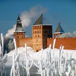 Novgorod Kremlin_Visnap A (3)