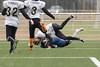 4D3A3144 (marcwalter1501) Tags: minotaure tigres strasbourg footballaméricain football sportdéquipe sport exterieur match nancy