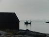 Mjelle (Bodø, Norway)-07238 (Stein Arne Jensen) Tags: bodø europa europe juli2009 mjelde mjelle nordland norway scandinavia sonydsch5 steinarnejensen европа أوروبا यूरोप ヨーロッパ 歐洲 유럽