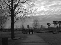 """""""let's rule the world"""" (vfrgk) Tags: boys strolling dreaming friends friendship duo urbanphotography urbanfragment urbanlife urbannature streetphotography streetscene streetlife streetsnap streetshot trees path pathway cloudysky cloud porn monochrome blackandwhite bw park cityscape winter perspective"""