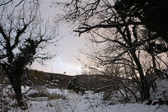 Snowing in San Vicino (xiaolifra) Tags: snow snowing snowman landscape mountain neve fiocchi gelo freeze freezing freddo inverno gennaio winter january paesaggiopanorama montagne montagna trees alberi nevicata snowed fiocco