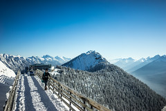 _DSC1335 (andrewlorenzlong) Tags: sam canada alberta banff national park banffnationalpark gondola banffgondola sulphurmountain sulphur mountain