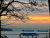 Shoreline Sunset (Irene - HAPPY NEW YEAR) Tags: shorelinesunset sunset sunsets sunsetskies sunsetclouds sunsetoutlines trees treesilhouettes treebranches tree tee clouds allclouds boats ships shoreline shipsandvessels vancouverisland outdoors outdoorscenes burrardinlet snowcappedmountains mountains