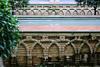 Real Alcazar (hans pohl) Tags: espagne andalousie séville eau water architecture arches alcazar